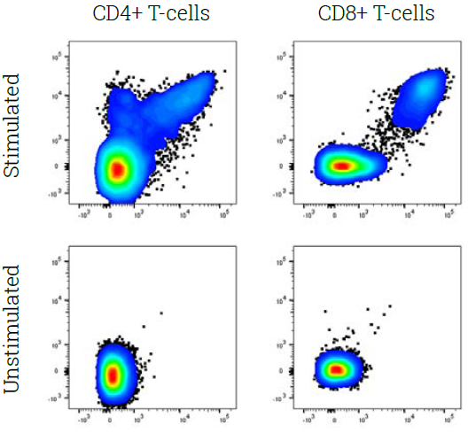 IFN-γ (x-axis) and TNF (y-axis) production by CD4+ T-cells (left) and CD8+ T-cells (right) activated with Influenza-A-derived peptides (stimulated vs. unstimulated)