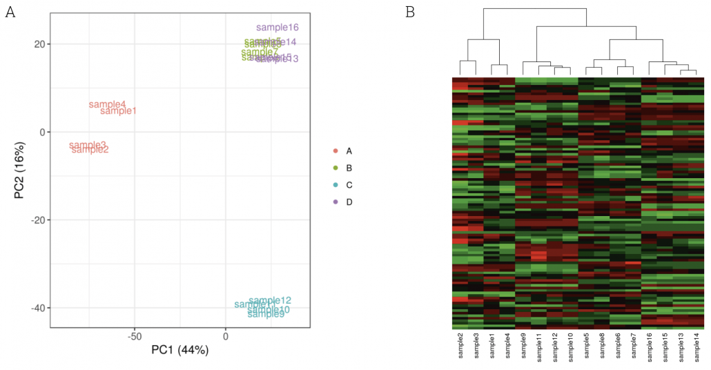 Figure 5: Results of differential gene expression analysis. A Principal component analyses of rlog-transformed expression data of all miRNAs that received at least one read. The percentage values on the axes describe how much of the variance between samples is captured in this principal component. Samples are colored according to group. B Heatmap of rlog-transformed expression data of all miRNAs that received at least one read.